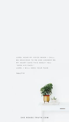 Download this free Psalm 27:7-8 lock screen from today's #WeeklyTruth post at SheReadsTruth.com.