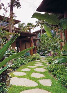 Tropical yard with stepping stones idea to go from gate at Driveway thru backyard to pool area