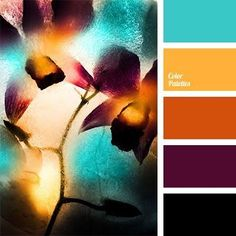Kinda using these at mo'.❀❥Sophie❥❀ ༻ S ༺ Palette de Couleur Scheme Color, Colour Pallette, Colour Schemes, Color Patterns, Color Combos, Autumn Color Palette, Orange Palette, Black Color Palette, Room Colors