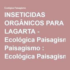 INSETICIDAS ORGÂNICOS PARA LAGARTA - Ecológica Paisagismo : Ecológica Paisagismo