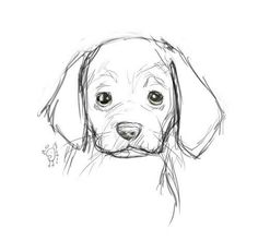 dog learning,dog tips,dog care,teach your dog,dog training Art Drawings Sketches Simple, Pencil Art Drawings, Easy Drawings, Drawing Ideas, Drawings Of Dogs, Animal Sketches Easy, Easy Animal Drawings, Art Sketchbook, Funny Animals