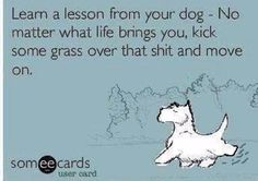 "E-Card: Dog Humor: ""Learn a lesson from your dog - No matter what life brings you, kick some grass over that sh*t and move on. Funny Shit, The Funny, Funny Life, Funny Stuff, Funny Memes, Hilarious Sayings, Funny Pugs, 9gag Funny, Memes Humor"