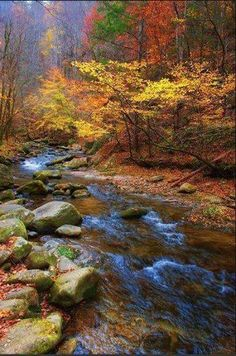 The Great Smoky Mountains  -    photo by Stan Shillingburg Photography