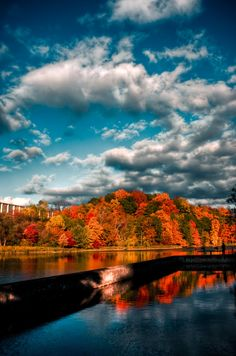 Cornell University is in ITHACA, NY beautiful no matter what time of year!