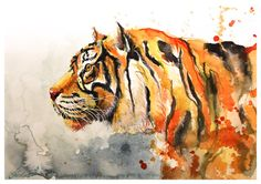 tiger by ElenaShved on DeviantArt Watercolor Tiger, Tiger Painting, Watercolor Animals, Watercolor Paintings, Watercolour, Tiger Drawing, Tiger Art, Save The Tiger, Cute Doodles