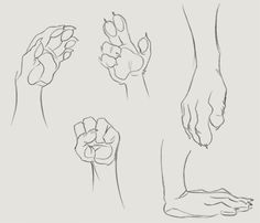 Paws hands ref 02