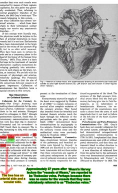 Dr Social - 06 - PubMed Commons Anatomy - Nomenclature #KTCG #ANATOMY