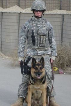 Should Military Service Dogs Go Home With Their Soldier