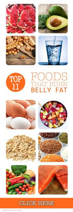 Top 11 Foods That Burn Belly Fat - Start by knowing the reasons for fat accumulation in your tummy so that you can take the necessary steps. Read Now! #creationista
