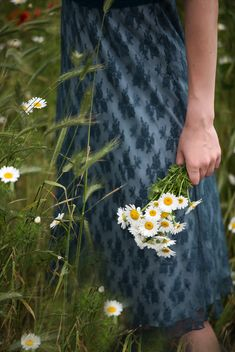 - A young woman holding a bouquet of daisies behind her back. Country Blue, Country Charm, Writing Inspiration Prompts, Growing Blueberries, Grandmas Garden, Beautiful Farm, Female Character Inspiration, Seasons Of The Year, Little Flowers