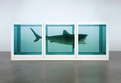 """Damier HIRST (1965- ), """"The physical impossibility of death in the mind of someone living"""", 1991"""