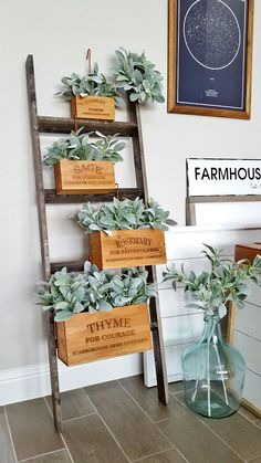 Decorated Herb Box With Lamb's Ear. Decorated Herb Box With Lamb's Ear. Farmhouse Style, Farmhouse Decor, Halloween Mason Jars, Porche, First Apartment, Ladder Decor, Fall Decor, Diy Home Decor, Sweet Home
