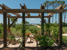 Grapevines will go up and out, creating a shaded structure supported by three living walls. >> http://www.diynetwork.com/blog-cabin/blog-cabin-2013-pergola-pictures/pictures/index.html?soc=bc