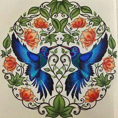Instagram media jardimsecretoinspire -  Começando o sábado com uma inspiração ⓜⓐⓡⓐⓥⓘⓛⓗⓞⓢⓐ dessas!  amei tudo, as folhas, as flores, o beija flor então....