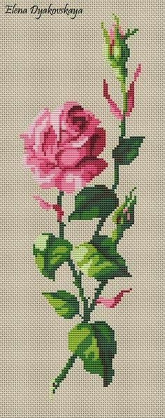 Discover thousands of images about Roses cross stitch. Cross Stitch Rose, Cross Stitch Borders, Cross Stitch Flowers, Cross Stitch Charts, Cross Stitching, Cross Stitch Embroidery, Hand Embroidery, Funny Cross Stitch Patterns, Embroidery Patterns Free