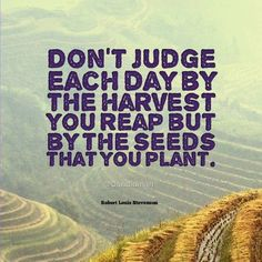 """Don't judge each day by the harvest you reap but by the seeds that you plant"". #Quotes by #RobertLouisStevenson via @candidman"