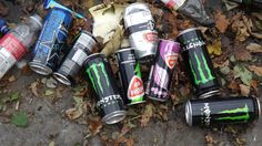 Taxonomy Project, cans that have fallen into the  bowl