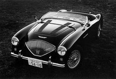 55' Austin Healey LeMans 100/4