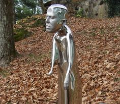 DeCordova Sculpture Park and Museum -- Each Pass admits 4 people for FREE. Starting Oct. 1 there will be a 5 dollar per person copay, children 12 and under are FREE.