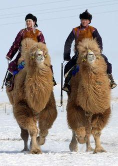 Dans le désert de Gobi.