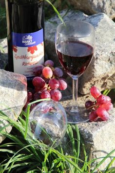 Weine aus Baden! Beispielsweise der Spätburgunder Rotwein der WG Gengenbach. Aber auch aus Durbach und Diersburg kommen unsere Weine. Hier könnt ihr in unsere Weinwelt eintauchen: http://shop.markt-scheune.com/