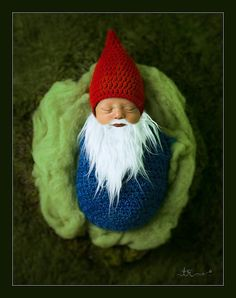 Hey, I found this really awesome Etsy listing at https://www.etsy.com/listing/287125661/spring-props-gnome-set-gnome-costume