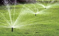 Rain Bird has a variety of rotary nozzle heads to attach to a sprinkler system—all use about 60 percent less water than spray nozzles and operate at 20 psi. Adjustable spray radii and different spraying patterns make it easier to water the lawn and not the sidewalk. Price: $5.25   - PopularMechanics.com