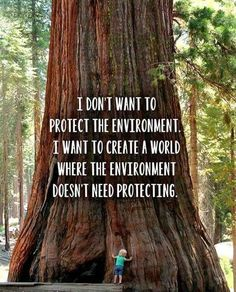 I don't want to protect the environment. I want to create a world where the environment doesn't need protecting this is a good quote this is a true factor Great Quotes, Quotes To Live By, Me Quotes, Motivational Quotes, Inspirational Quotes, Qoutes, Save Our Earth, Save The Planet, Nature Quotes