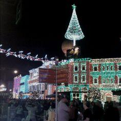 Merry Christmas from Hollywood Studios (Orlando, FL)