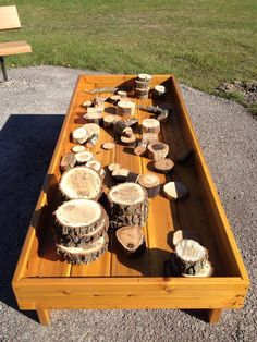 Different-sized pieces of tree for children to; explore, construct, incorporate into imaginative play.