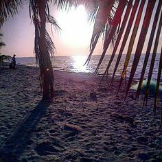 #Salinas #Baní #DominicanRepúblic #Turismo #Playa - @esglen- #webstagram