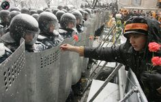 "Carnations to the ""anti-riot"" forces http://totallycoolpix.com/wp-content/uploads/2010/16122010_best_of_the_decade/decade_91.jpg"