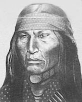 Cochise by Robin Wolf