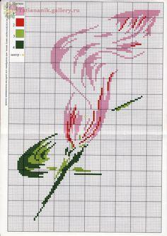 Calla lily cross stitch