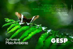 Grupo Ecológico Sentinela dos Pampas: Dia Mundial do Meio Ambiente