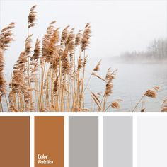 Embodies a combination of soft pastel tones. Warm reddish-brown blends with gray, making a very calm color scheme. Such a range would be appropriate in clothes of a young and energetic male manager. Besides, the office of the boss in such colors will be nice to look at as well.