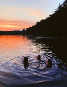 Lake Pictures Discover Vsco Pictures b f f s VSCO - fatmoodz Photos Bff, Best Friend Photos, Best Friend Goals, Friend Pics, Summer Nights, Summer Vibes, Cute Friend Pictures, Summer Goals, Photo Couple