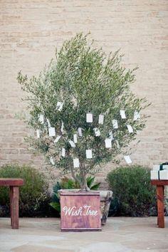 A wish tree: Netherlands wedding tradition
