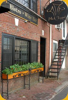 Portsmouth, NH - Black Trumpet Bistro is a family-owned bistro and wine bar in the heart of Portsmouth's historic old port. The menu changes every six weeks to capitalize on the freshest seasonal ingredients. The wine list features a variety of unheralded gems that pair well with the bold flavors of Chef Mallett's cuisine.