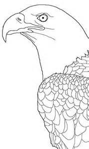Bald Eagle Soaring Coloring Page