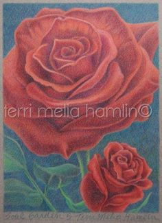Roses from the Flower Garden of your Soul  5 Print by MeliaArts