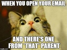 nothing ruins a teacher's day faster than an email from *that* parent    #teacherproblems
