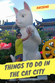 """Perfect place for all cat lovers is this amazing cat city of Kuching in Sarawak Borneo, Malaysia. Kuching itself means """"Cat"""" in the local language and the city is filled with cat statues, cafes, museum and the likes. Here are 30 things to do for cat lover Teacup Cats, Mean Cat, Cat Jokes, Cat City, Asia Travel, Wanderlust Travel, Travel Tips, Travel Articles, Travel Advice"""