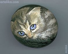 painted rocks: blue eyed kitten