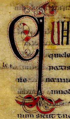 """Q"". England 8th cent. BL by tony harrison, via Flickr Medieval Manuscript, Medieval Art, Illuminated Letters, Illuminated Manuscript, Medieval Pattern, Alphabet Symbols, Book Of Kells, Book Of Hours, Celtic Art"