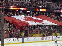 Ottawa Senators game. National Hockey League, The Province, Ottawa, Around The Worlds, Canada, Tours, Game, Gaming, Toy