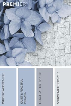 Farben Wildflower paint palette Bring A World Of Color With Blinds As life's color Room Colors, Wall Colors, House Colors, Blue Colour Palette, Colour Palettes, Periwinkle Color, Blue Color Schemes, Periwinkle Bedroom, Color Blue
