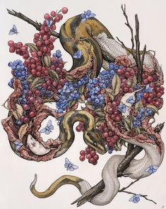My name is Lauren Marx and I am an artist based in St. Louis, Missouri and I create nature-focused artwork. Snake Art, Animal Art, Art Inspo, Drawings, Fantasy Art, Amazing Art, Artwork, Dark Art, Art Reference