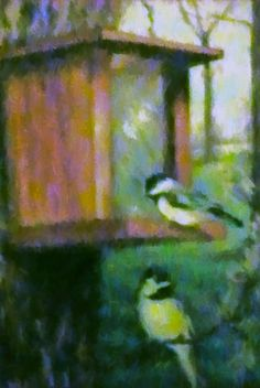 Birds at a Feeder Painting