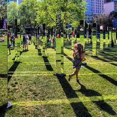 Прогулка по зазеркалью: необычный лабиринт в Гайд-Парке (Сидней). (6 фото)